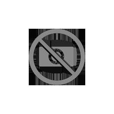convegno-LEGNO:PASSIONE-E-DESIGN